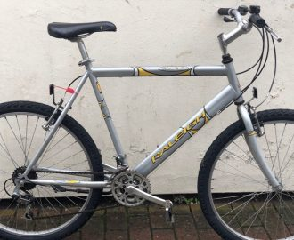 Raleigh Max
